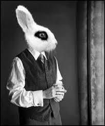 Emma Freud Rabbit Hutch 500px Photo
