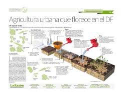 urban agriculture grows in federal district visualoop