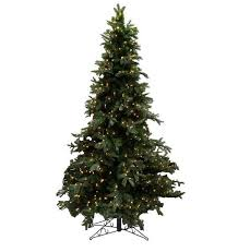 ft canterbury fir slim tree