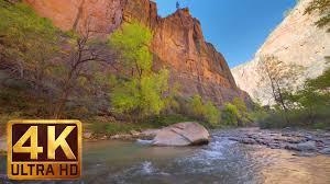buttercups riverside wallpapers zion national park riverside walk trail 4k relax video proartinc