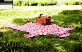 Outdoor Blanket Target by Uk Bear Skin Picnic Blanket Noveltystreet