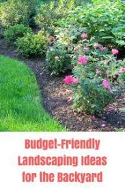 Cheap Landscaping Ideas For Backyard 25 Beautiful Cheap Landscaping Ideas Ideas On Pinterest