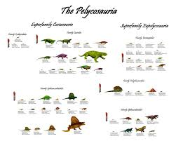 the pelycosauria a chart of every pelycosaur discovered to date