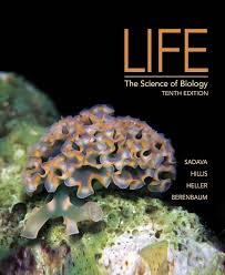 launchpad for sadava u0027s life the science of biology 24 month