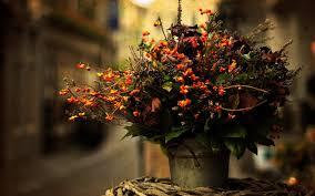 autumn flowers vase flowers bouquet autumn photo autumn pinterest autumn