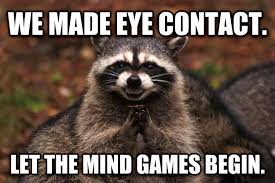 Eye Contact Meme - livememe com evil plotting raccoon