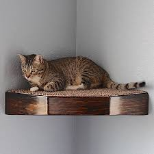 Wall Shelves For Cats Cat Corner Wall Shelf Floating Stained Wood Style