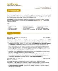 Resume Electrician Sample 100 Electrician Job Resume Heart Darkness Analysis Essay