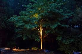 Landscape Lighting Trees Residential Outdoor Lighting In Pittsburg Pa