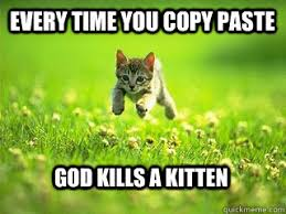 Meme Copy And Paste - every time you copy paste god kills a kitten excited kitten