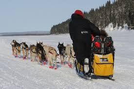 Iditarod Map Iditarod 2014 Map Weather And More From Unalakleet To