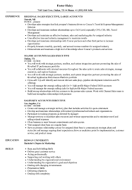 executive resume sles sales accounts executive resume sles velvet