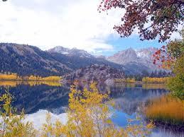 early eastern sierra fall color guide