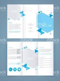 professional brochure design templates professional business flyer template or brochure design stock