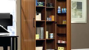 sauder homeplus basic storage cabinet dakota oak sauder homeplus storage cabinet full size of storage cabinet swing