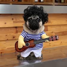aliexpress com buy funny pet guitar player cosplay dog costume