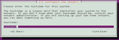 ubuntu network install tutorial server how do i configure preseed to populate the hostname from