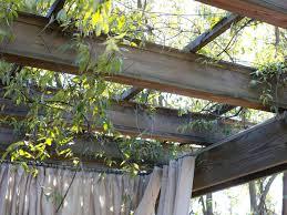 outdoor privacy ideas hgtv