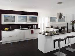 Kitchen Cabinets With Frosted Glass Kitchen Room Design Exceptional Perfect Color Painting Kitchen