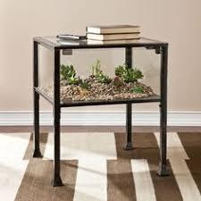terrarium coffee table amazing reptile rapture pinterest