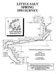 Florida Springs Map by Little Salt Springs