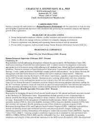 Good Example Resume by Help Homeland Resume