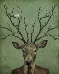 luciusart leroy s antlers 8x10 print store powered by