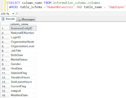 how to view table in sql get table column names list in sql server by code