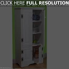 pantry cabinet for kitchen cabinet ideas to build