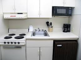 Apartment Kitchen Decorating Ideas On A Budget Emejing Small Apartment Kitchen Ideas Images Rugoingmyway Us