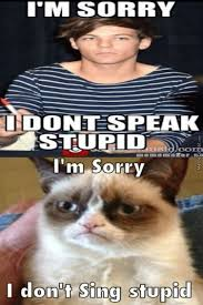 Internet Meme Songs - why call us stupid when actually your songs are just stupid by