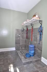 best 25 dog bathing ideas on pinterest dog washing station dog