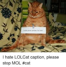 Lolcat Meme - i hate lolcat caption plz stop i hate lolcat caption please stop