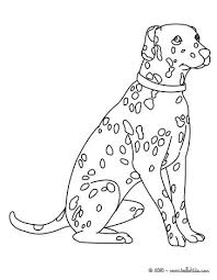 dalmatian coloring pages hellokids