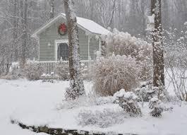 and then winter in terie u0027s garden in new york fine gardening