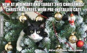 cat christmas tree meme learntoride co