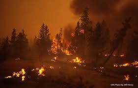 Canada Wildfire Minneapolis by Tnc In Minnesota Nature Mn Twitter