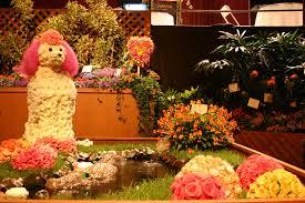 san francisco florist san francisco flower garden show preview cbs san francisco