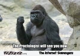 Funny Gorilla Meme - the proctologist will see you now funny meme pmslweb