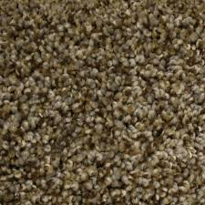 What Is Stainmaster Carpet Made Of Shop Carpet At Lowes Com