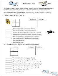 classroom freebies need an introductory genetics worksheet