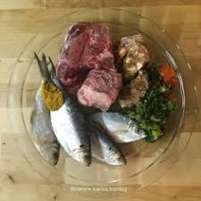 example of a barf style raw diet for dogs pets pinterest dog
