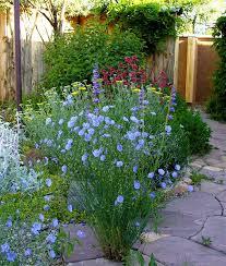 70 best garden colour combinations images on pinterest flower