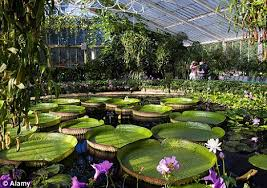 Royal Botanic Gardens Kew Richmond Surrey Tw9 3ab Richmond Guide Your Guide To The Local Area