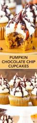 pumpkin chocolate chip cupcakes life love and sugar