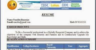 professional finance resume template