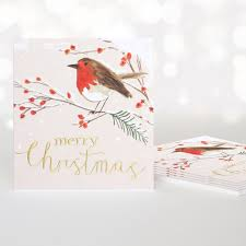 robin on branch merry christmas pack of 5 christmas cards