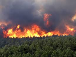 Wildfire Deaths Per Year by California Wildfires Burning Out Of Control Are Natural Phenomena