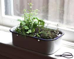 window herb harden e a t portable kitchen window herb garden