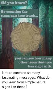 Tree Trunks Meme - did you know by counting the rings on a tree trunk you can see